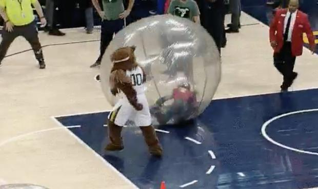 news watch jazz bear lays clippers messing with during court contest
